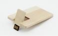 USB Stick Design 213 - thumbnail - 1